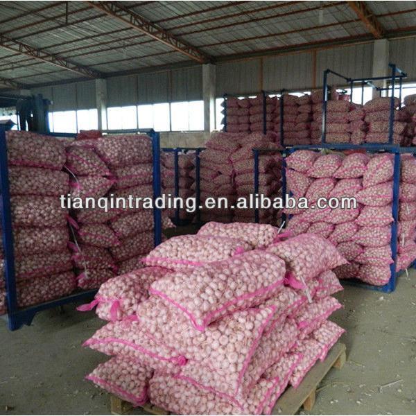 2017 Jinxiang fresh garlic price #1 image