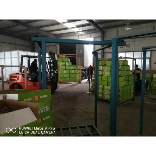 NEW CROP GARLIC WITH 10KG LOOSE CARTON PACKAGE FOR SENEGAL MARKET #4 image