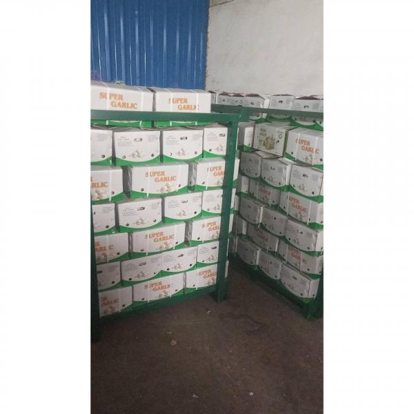 2018 china garlic with 10kg loose carton package to Brazil market . #1 image