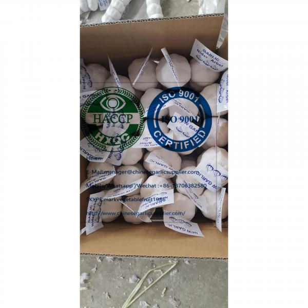 China pure white garlic are (200g*50 bags=10kg/carton ) for Iraq market. #1 image