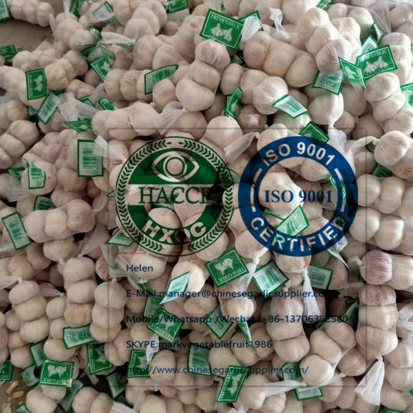 Normal White Garlic With Small Package To Ukraine Market! #2 image