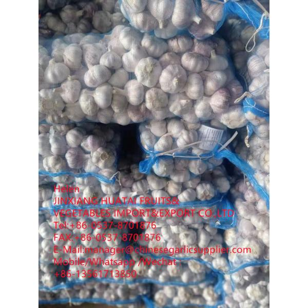 china normal white garlic with meshbag to Dominican Republic market #2 image