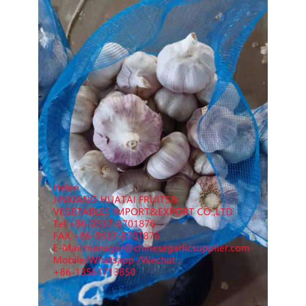 Top quality normal white garlic with meshbag to Dominican Republic market #1 image