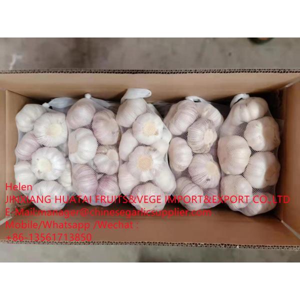 China Normal white garlic with carton package to UK Market #2 image