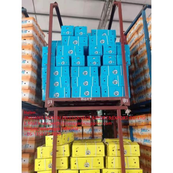 China Normal white garlic with carton package to UK Market #3 image