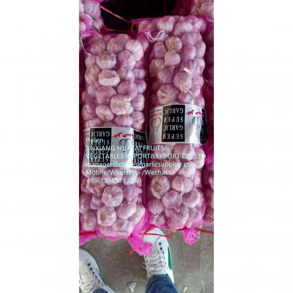 Normal white garlic with meshbag to Middle East market From China garlic factory ! #1 image