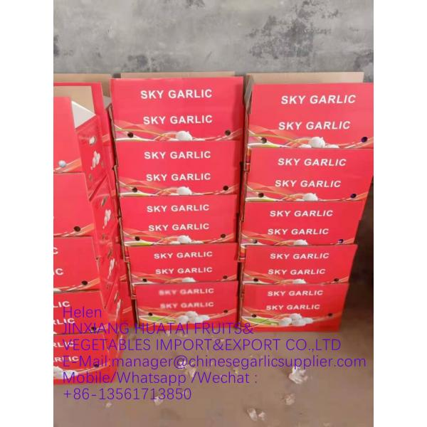 white garlic with carton package to UK Market with good quality from China #2 image