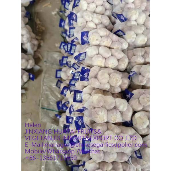 Normal white garlic with carton package to UK Market ! #1 image